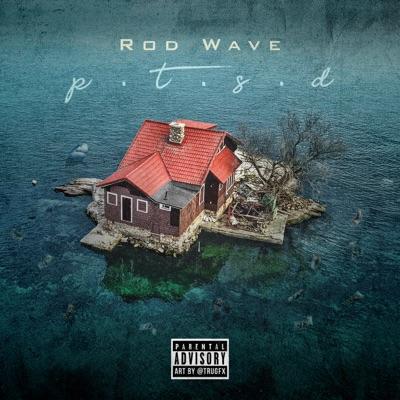 Rod wave   ptsd