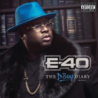 E 40   the d boy diary book 2