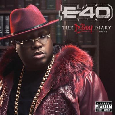 E 40   the d boy diary book 1